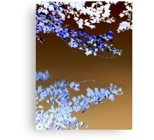 Blue Mornin' Blue Day...... Canvas Print