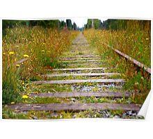Overgrown Train Tracks Poster