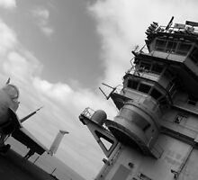 Carl Vinson's Roost by Eric  Neitzel