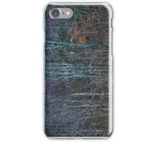 Winter Trees Texture, Maryland iPhone Case/Skin