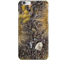 Pine cones on the ground, Yosemite National Park iPhone Case/Skin