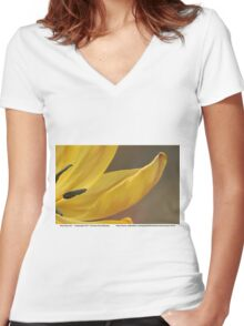 Alluring and... Women's Fitted V-Neck T-Shirt