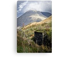 The Scottish Highlands No.9 Canvas Print
