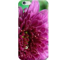Stunning Pink! iPhone Case/Skin