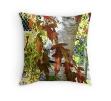 Maple and Birch Throw Pillow