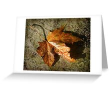 fallen ... Greeting Card