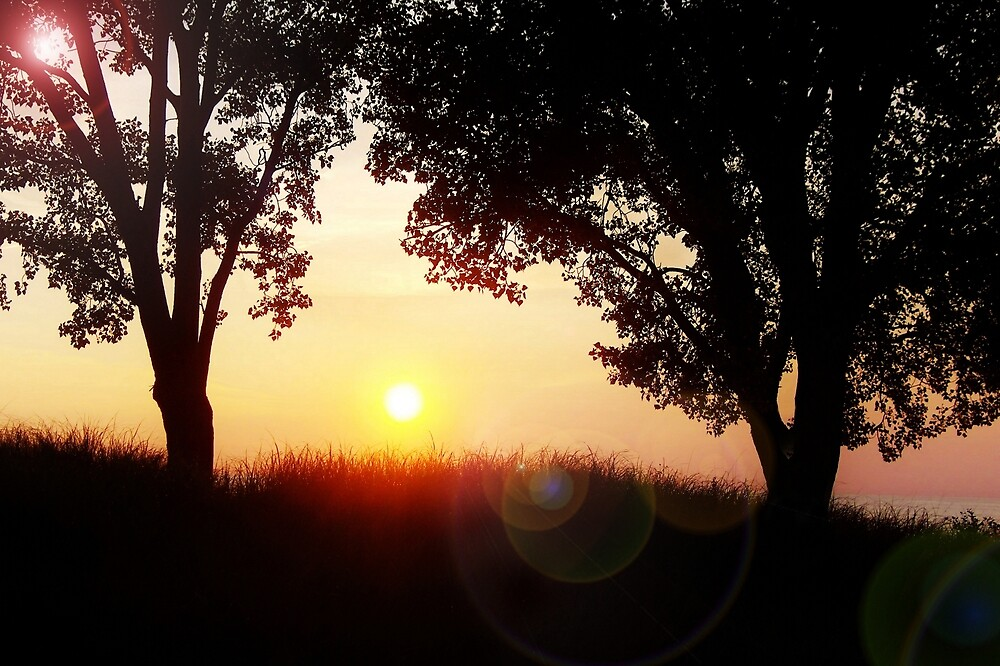 A Flare For Silhouettes by Kathilee