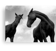 Horses (13-19) Canvas Print