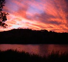Bow Hill, River Murray, South Australia by MATT BAILEY