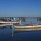 Fishing boats Etang de Bages Narbonne France by Paul Pasco