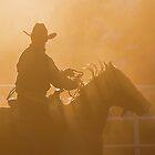 Cowboy sunset by Penny Kittel