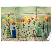 Ranunculus, Bottles and Window Floral Still Life Poster