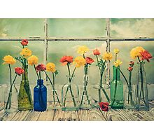 Ranunculus, Bottles and Window Floral Still Life Photographic Print