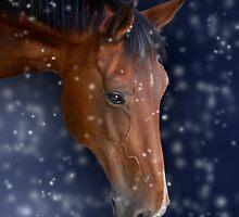Bay Horse in Snow by Ethiriel