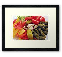 The selection of vegetables. Framed Print