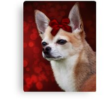 Chihuahua with Red Bow Canvas Print