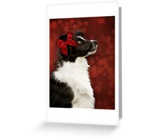 Collie on Bokeh with Big Red Bow Greeting Card