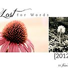 2012 Lost For Words Calendar Cover by Franchesca Cox