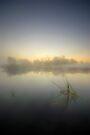 Misty Dawn 4.1 by Yhun Suarez