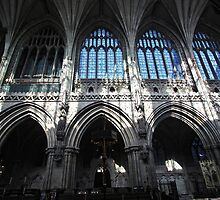 Lichfield Cathedral 1 by MartinMuir