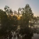 Misty Dawn 2.1 - Panoramic by Yhun Suarez
