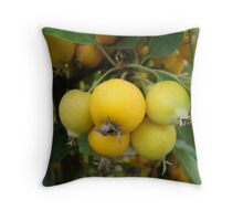 Yellow Crab Apples Throw Pillow
