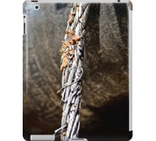 Metal wire iPad Case/Skin