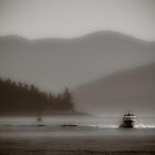 San Juan Island Cruising by Lynnette Peizer