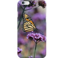 Monarch mauve iphone iPhone Case/Skin