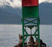 not just a bouy! Juneau Alaska by creativegenious