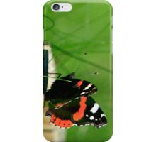Butterfly Gazing iPhone Case/Skin
