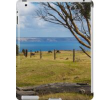 Kangaroos grazing iPad Case/Skin