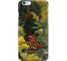 Butterfly iPhone Case/Skin