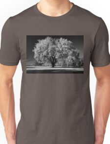 Autumn Shadows Unisex T-Shirt