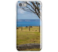 Kangaroos grazing iPhone Case/Skin