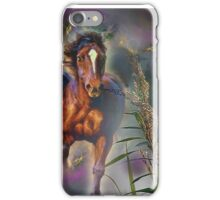 Two horses  iPhone Case/Skin
