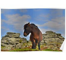 Dartmoor: 'This is my Best Side' Poster