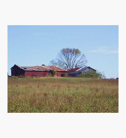 GUESS WHAT?  ANOTHER OLD BARN! Photographic Print