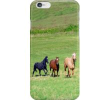 Laura's Horses iPhone Case/Skin