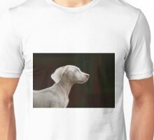 Gray Ghost Unisex T-Shirt