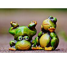Two frogs Photographic Print