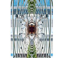 Jay Pritzker Pavillion Photographic Print