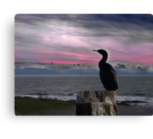 The Fisherman Rests Canvas Print
