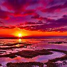 """Roadknight Daybreak"" by Phil Thomson IPA"
