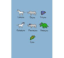 Unicorn, Bicorn, Tricorn, Quadcorn, Pentacorn, Hexacorn ... and Corn Photographic Print
