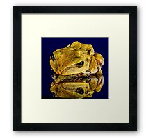 Frog yellow Framed Print
