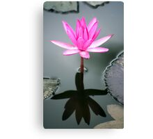 Tropical Diva - waterlilly flower Canvas Print