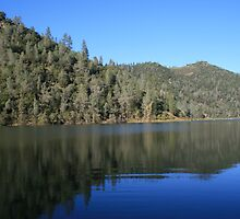 Lake Clementine, Thanksgiving Day 2010 by Maurine Huang