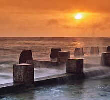 Coogee Sunrise  by Adriano Carrideo