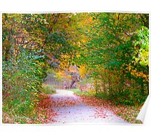 Nature's archway to awe Poster